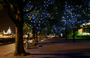 Trees with blue and white lights on the South Bank. Photo by Marco Marini on Flickr, CC BY-NC-SA 2.0 licence